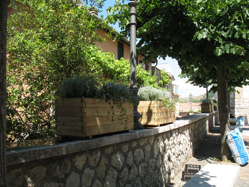 5 orto botanico for Piante carnivore prezzi