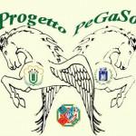 PEGASO21