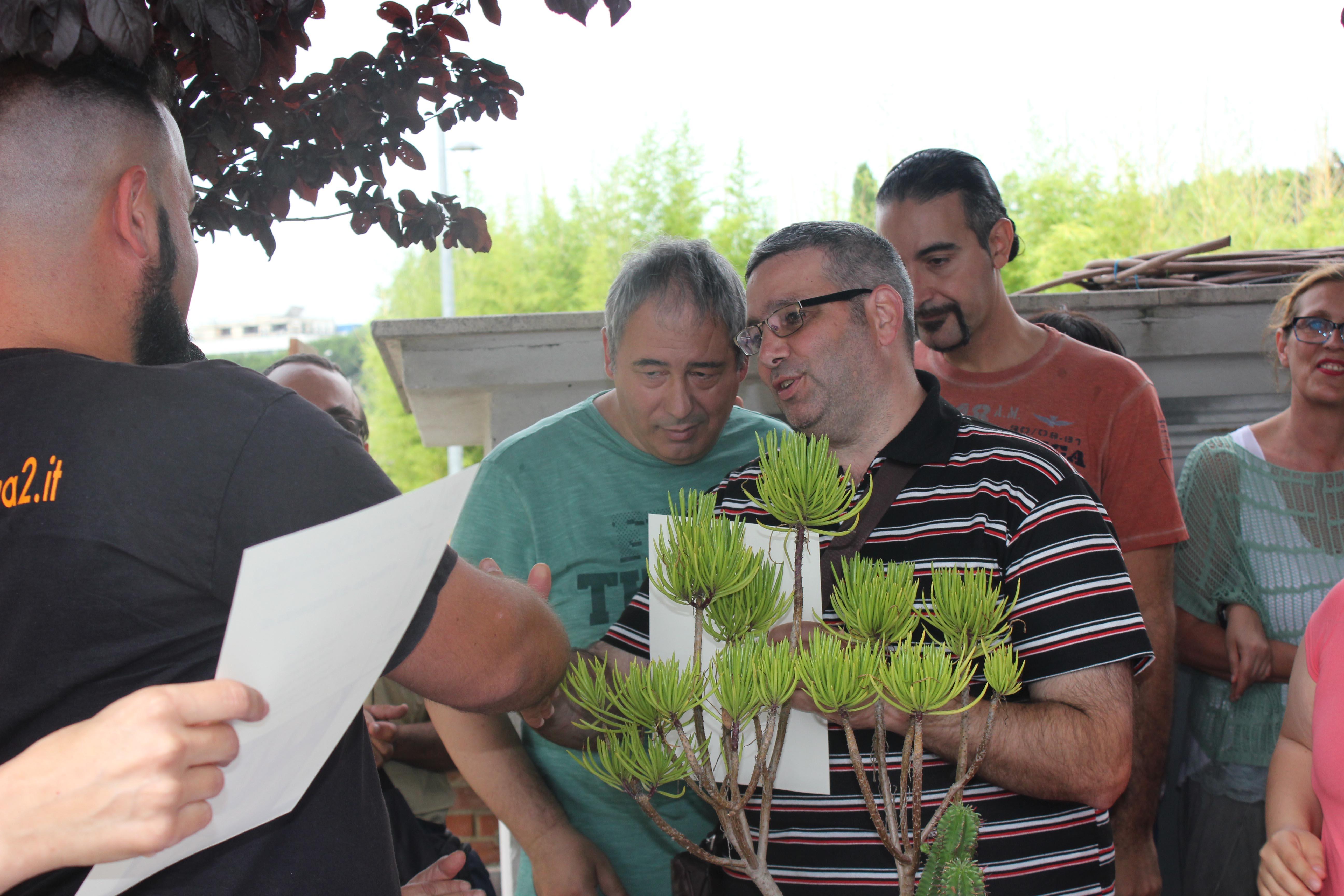 Img 7535 orto botanico for Piante carnivore prezzi