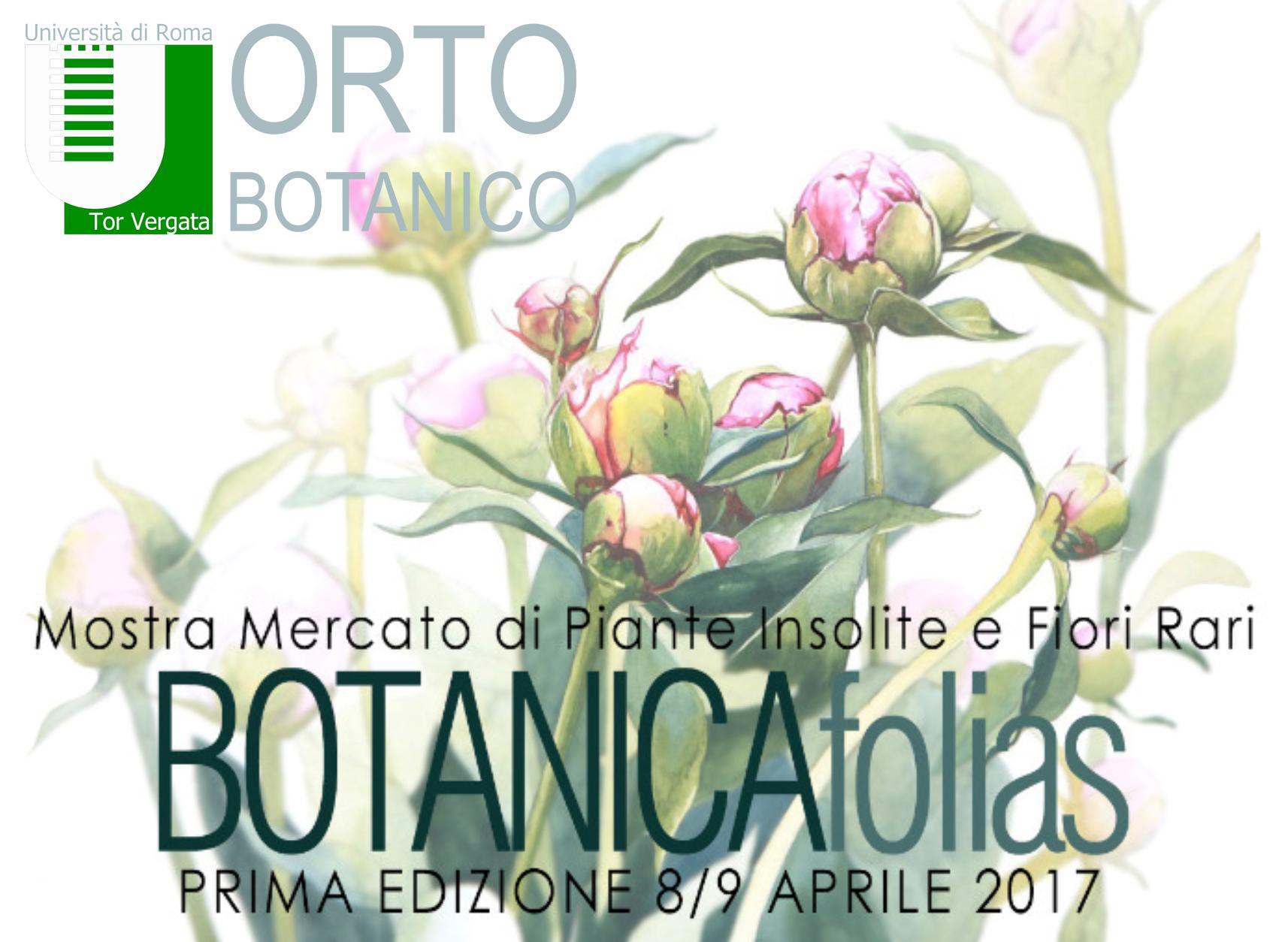 BOTANICAfolias