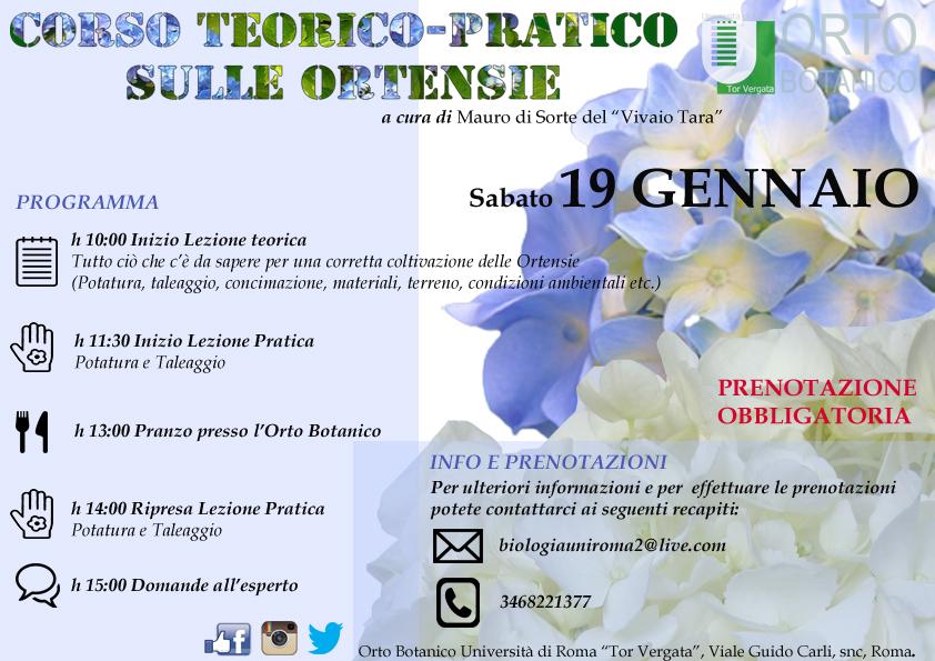SABATO 19 GENNAIO: CORSO TEORICO-PRATICO SULLE ORTENSIE