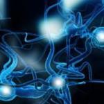 neuroni--330x185