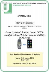 Michelini.pdf